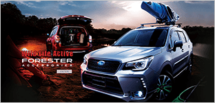 Wild Life Active FORESTER ACCESSORIES ENTER